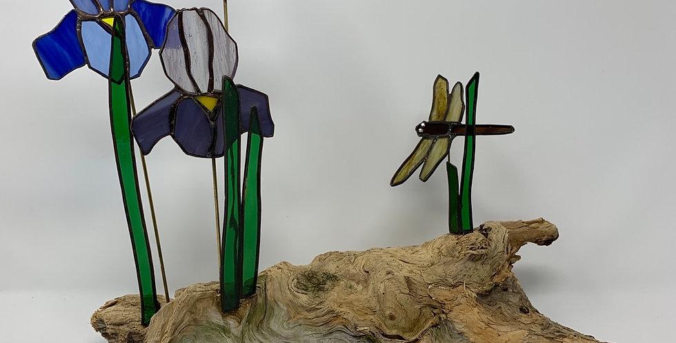 Iris on Wood w/Dragonfly