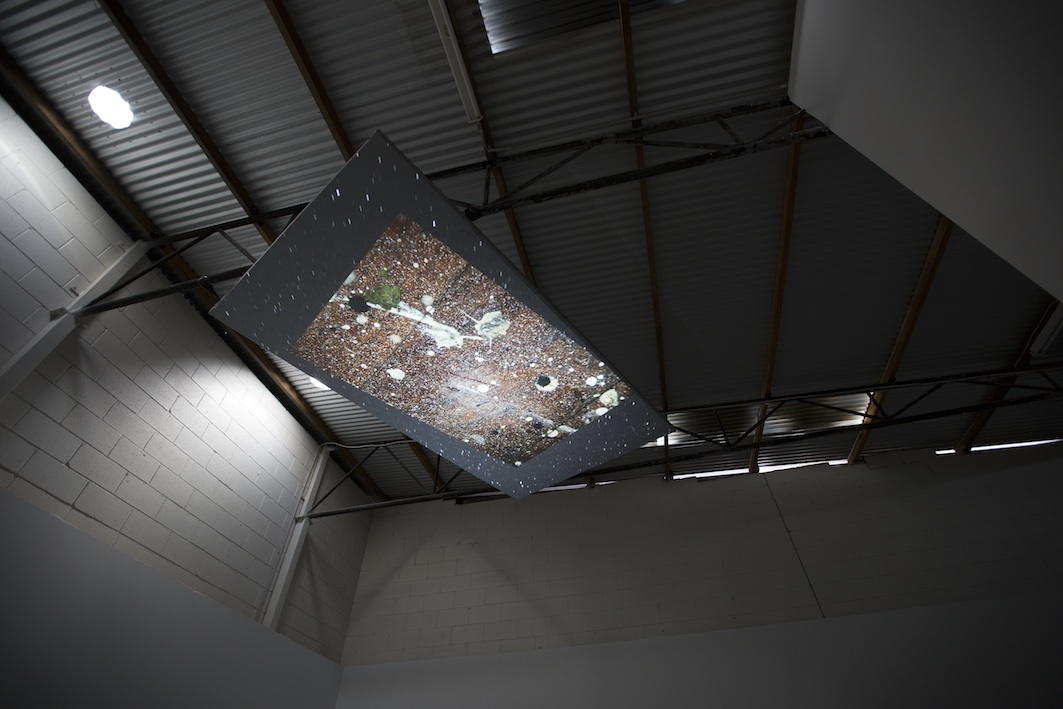 Fern Studio Floor: a cosmology