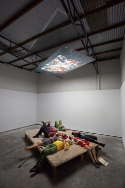 Fern Studio Floor: a cosmology 2014