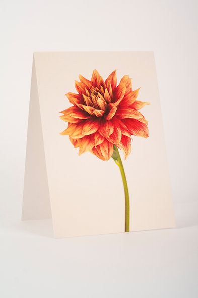 7 x 5 - Folded Card