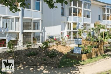 """Le jardin des saveurs de la commission """"Environnement, propreté, sécurité"""" du CMJ de la Roche-sur-Yon"""