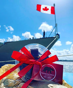 The Royal Canadian Navy