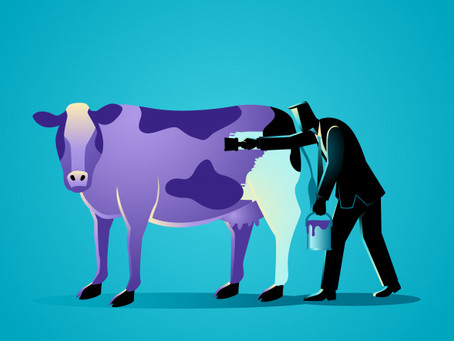 What did the Purple Cow by Seth Godin teach me?
