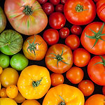 tomates-colores.jpg