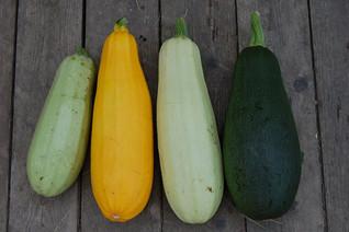 zucchini-1637435_960_720.jpg