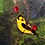 Thumbnail: American Goldfinch with Berries Stained Glass Suncatcher