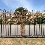 Tree on School Fence.JPG