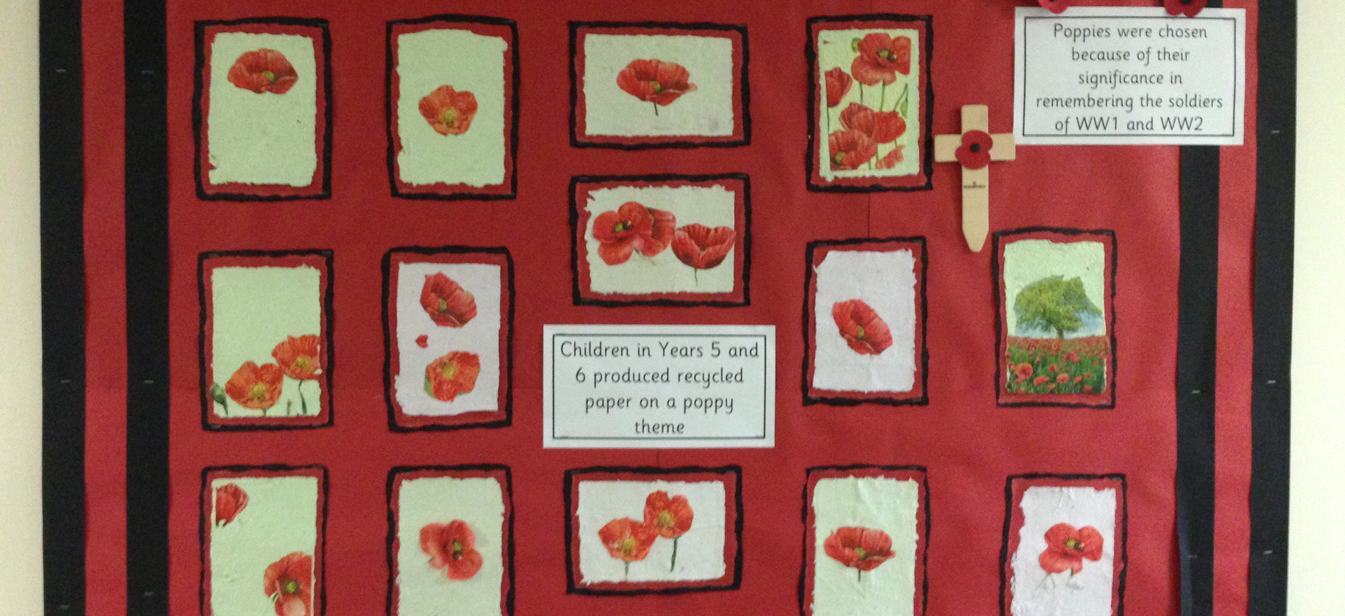 Remembrance Day Recycled Paper on Display at Highgate Primary Academy, Barnsley