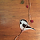 Thumbnail: Sideview Chickadee Stained Glass Suncatcher