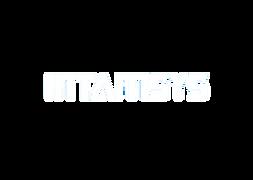 INTAMSYS Logo拷貝.png