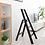 Thumbnail: Hasegawa Lucano 3 step stool (Black) 鋁梯