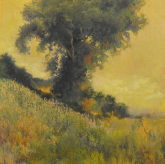 226. Layton Tree