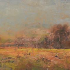 219. Autumn Overcast