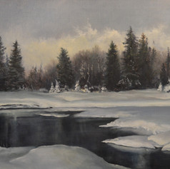 221. Snow Covered Meadow