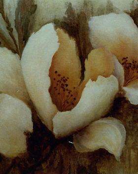 Waterlilies027.jpg