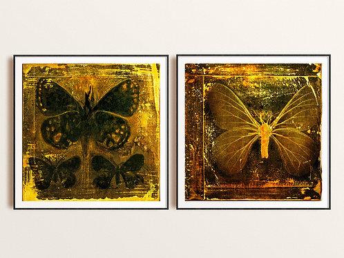 Black & Bronze Moths and Butterflies Mixed Media Art Print, Giclee Abstract