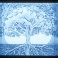 Maple Tree Blue