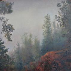 218. Adam's Forest