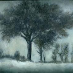 231. Wax Tree