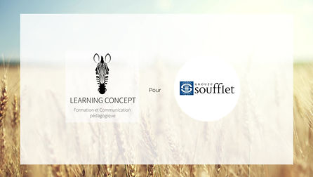 Module e-learning sur mesure à destination des pilotes.
