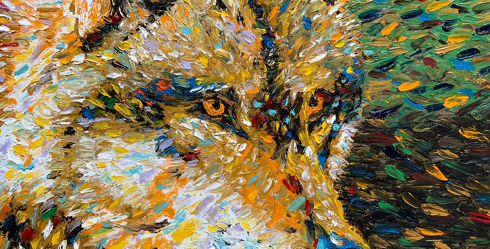 Wolf Closeup (SOLD)
