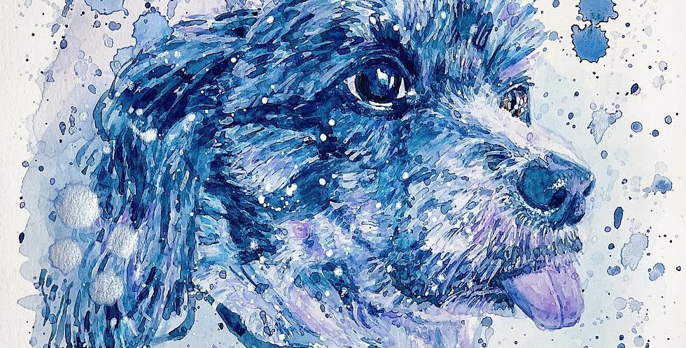 Dog - Portrait of Sid