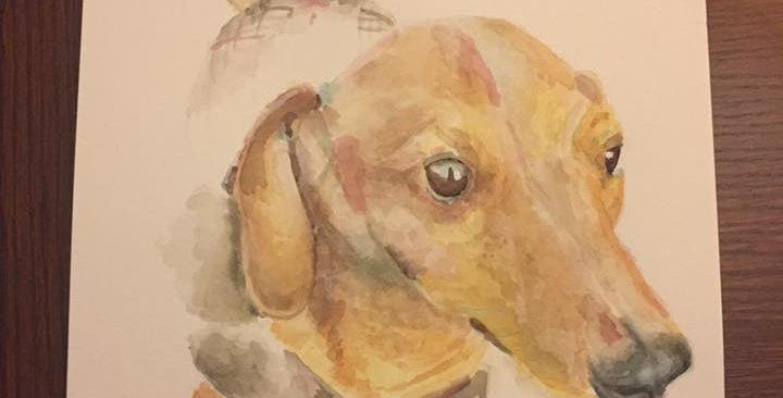 Dog - Portrait of Iggy