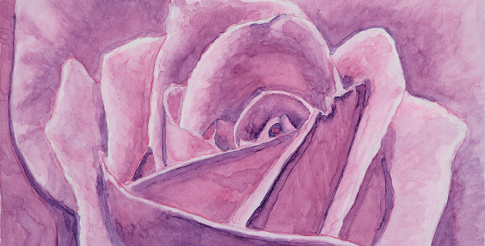 Rose Closeup (SOLD)