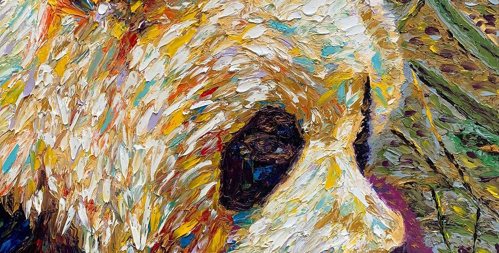 Panda Closeup (SOLD)