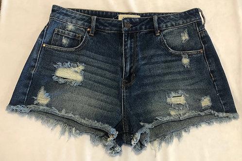 Pacsun Shorts--Size 10