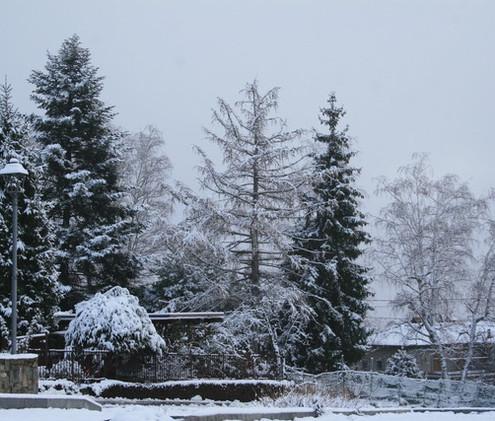 Neve a Cagliano 1