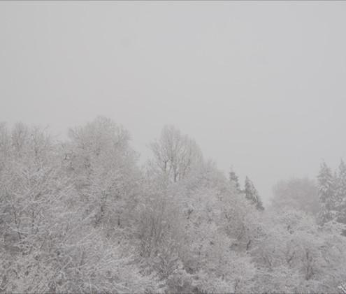 Neve a Cagliano 3