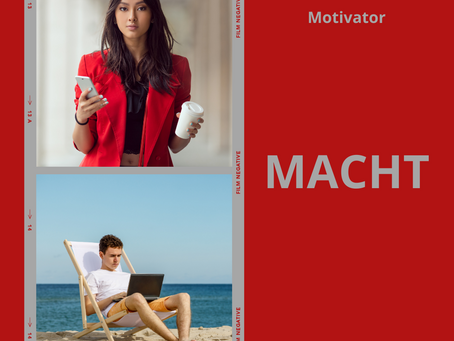 Das Reiss Motivation Profile® - Lebensmotiv MACHT