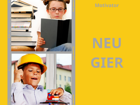 Das Reiss Motivation Profile® - Lebensmotiv NEUGIER