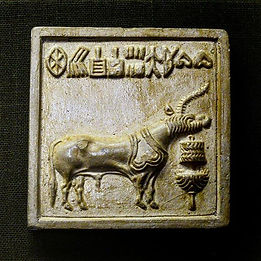 The enigma of Indus script._._.jpe