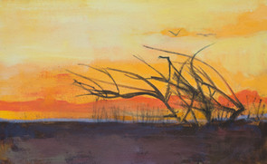 Sunset by the San Juan River