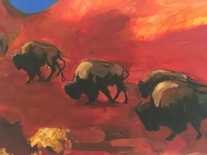 Bison at Bear's Ear