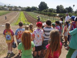 *CLOSED* Fairview Gardens Organic Farm Tour - Goleta, CA