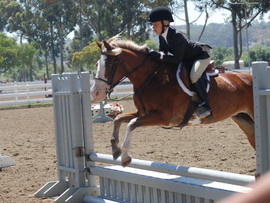 Hidden Fox Farm English Riding Lessons - El Cajon, CA