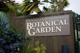 Free First Wednesdays at the UC Berkeley Botanical Garden - Berkeley, CA