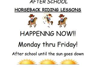 Horseback Riding Lessons - Selma, CA