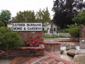 Luther Burbank's Santa Rosa Home & Gardens