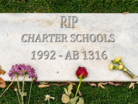 Don't Let Our Charter Schools Become Something From Memories Past