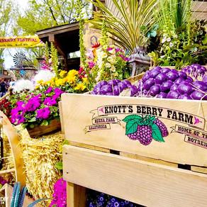 *CLOSED* Knott's Very Boysenberry Field Trip - Buena Park, CA