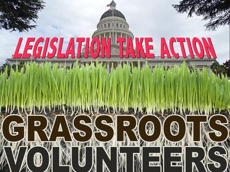 Legislation Take Action - Grassroots Volunteer Gatherings