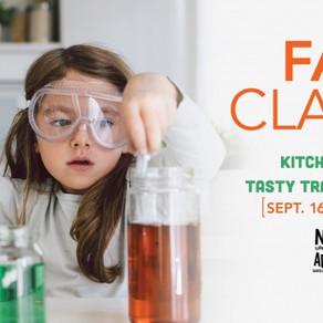 Homeschool Kitchen Science Classes - Santa Barbara Museum of Natural History, CA