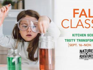 Home School Kitchen Science Classes - Santa Barbara, CA