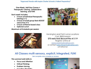 Therapeutic Summer Camp - San Diego, CA