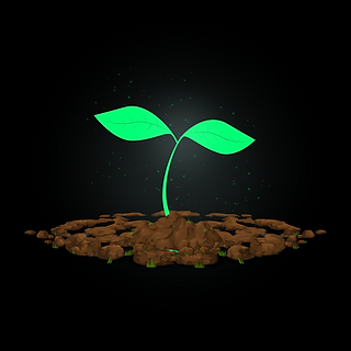 WGGT - SEEDLING (1).png