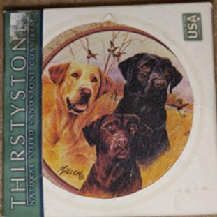 Thirstystone Coasters - Set of 4